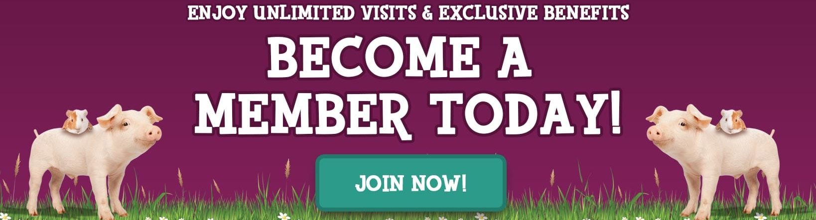 Become a Marsh Farm Member