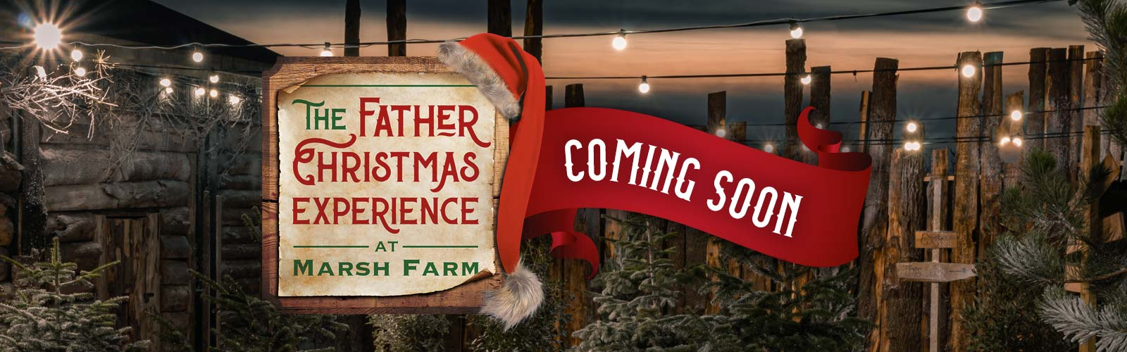 Father Christmas Experience