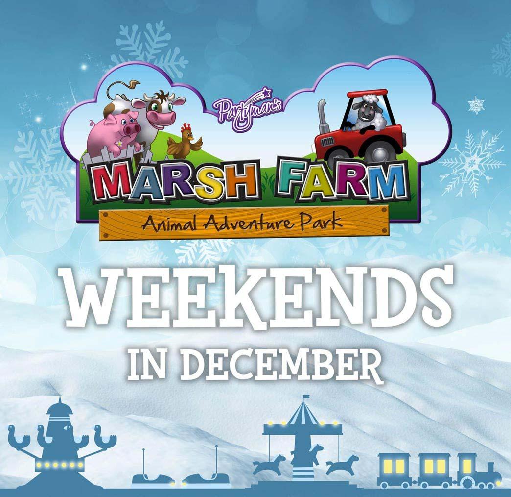 Wintery Weekend Fun at Marsh Farm