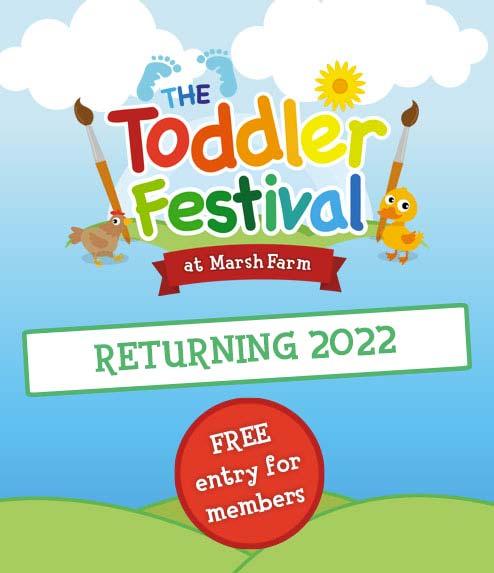 Toddler Festival