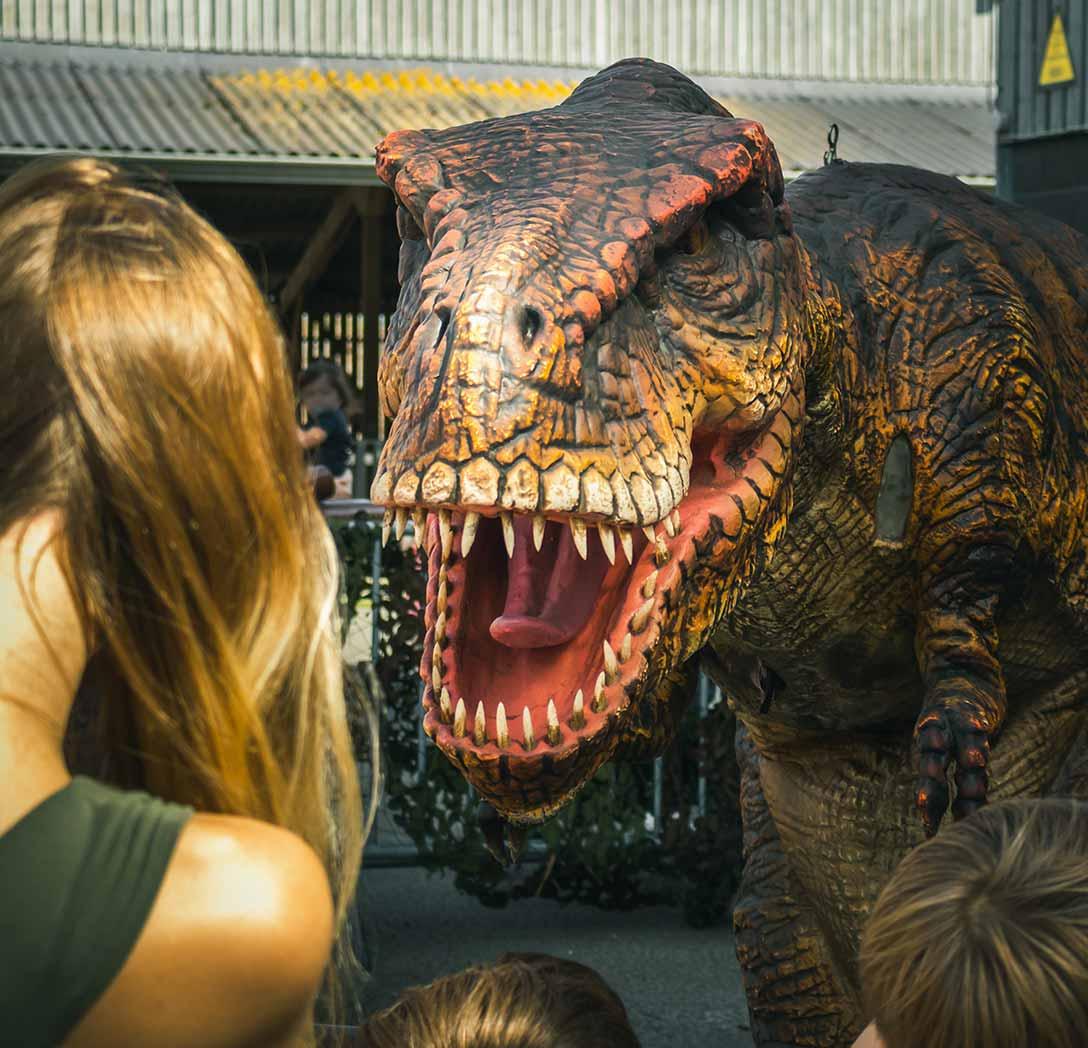 Meet a Dinosaur