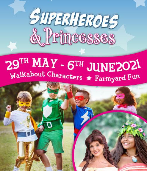 Superheroes & Princesses