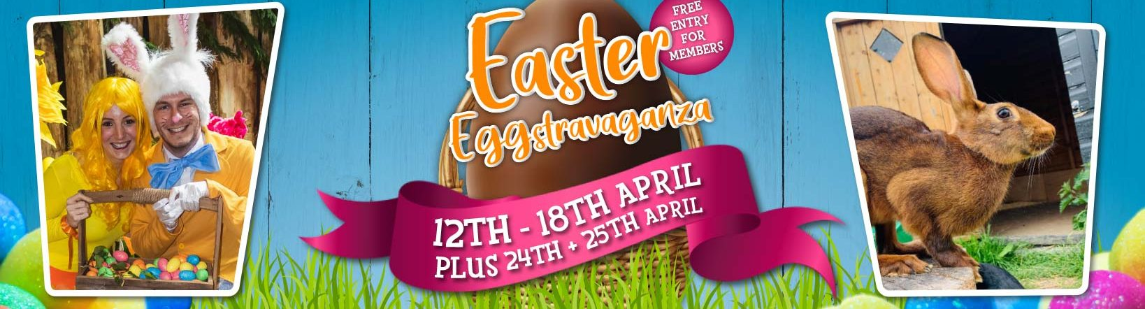 The Great Easter Eggstravaganza